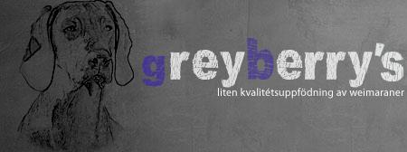 greyberrys.se